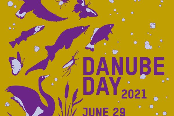 Dan Dunava: Kroz Dunavskog umetnika, učimo mlade da se menjaju i da menjaju