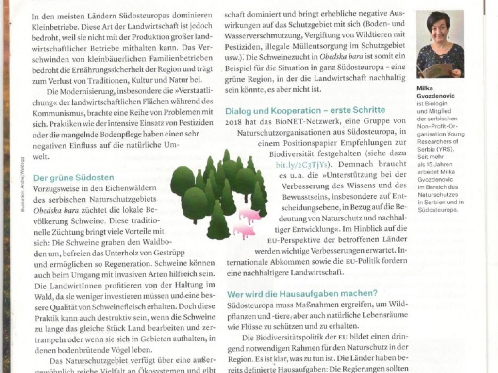 Obedska bara as an example of sustainable agriculture, an article published in Info – Europa (Die Presse)